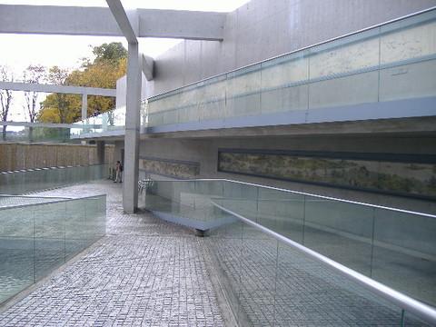 2006_11250005