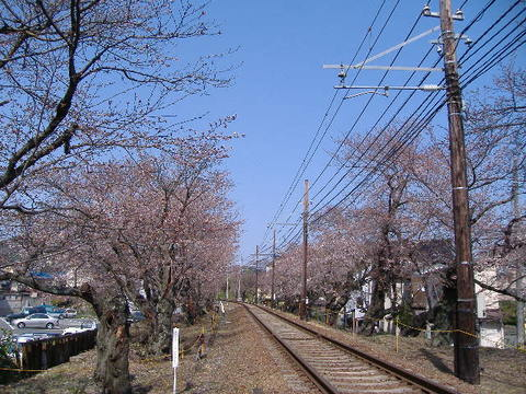 2006_04030002