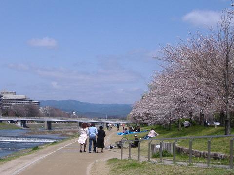 2006_04060019