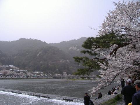 2006_04080001