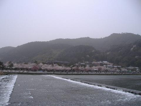 2006_04080002